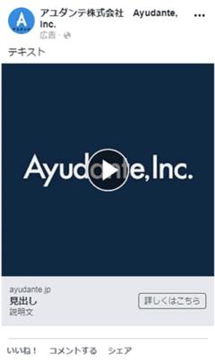 Facebook広告フォーマットの動画広告イメージ画像